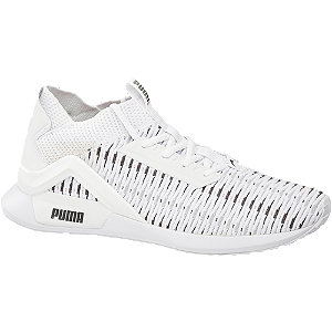 Sneaker Rogue Corded
