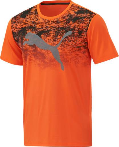 Puma Puma Training T-Shirt Herren