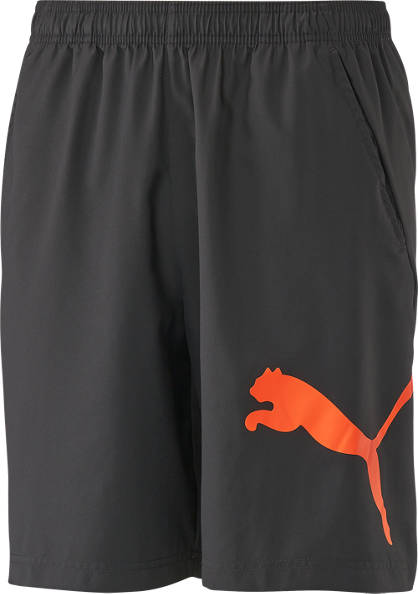 Puma Puma Training Short Herren