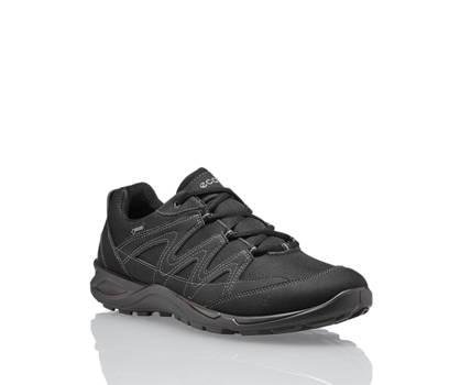 Ecco Ecco Terracruise GoreTex Hommes Chaussure à lacet