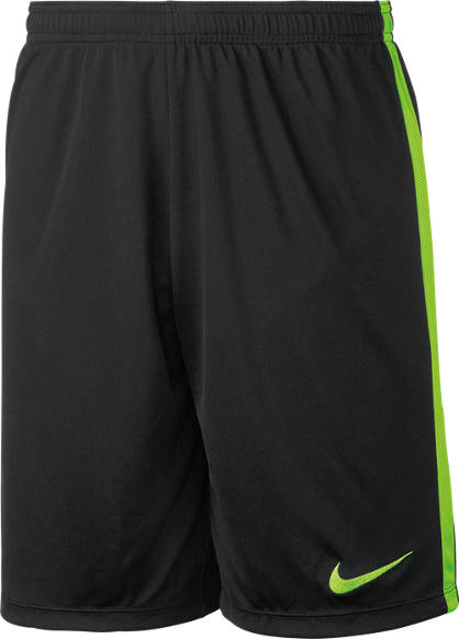 Nike Nike Shorts de football Hommes