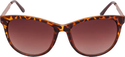 Wayferer Sunglasses