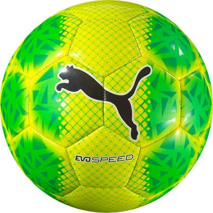 Puma Puma Speed 5.5 Fade Fussball