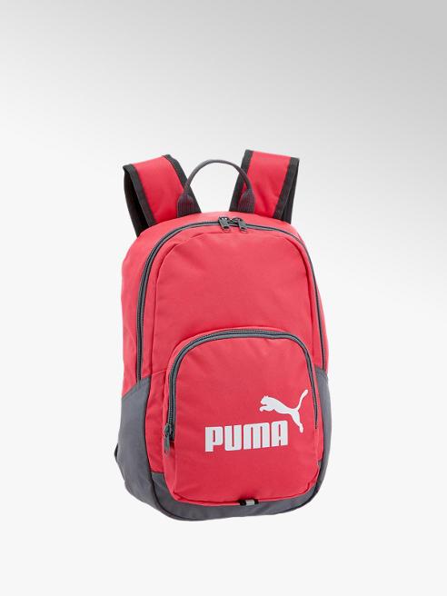 Puma Маркова раница